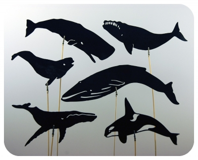 Whale shadow puppets