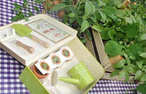 Sara Received This Super Cute Gardening Giftbox (from French Brand Moulin  Roty) As A Gift And It Comes Filled With Little Pots, Compost, Seeds, ...