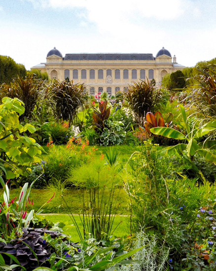 Le jardin des plantes paris babyccino kids daily tips for Plante ornementale des jardins