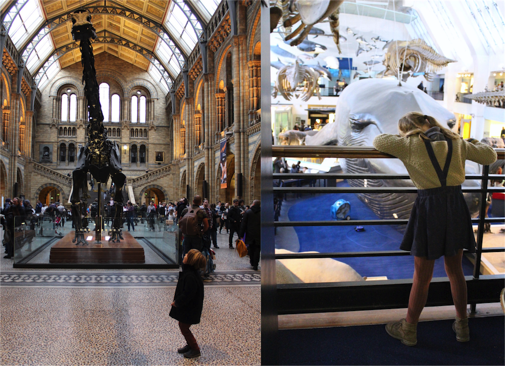 how to get to natural history museum