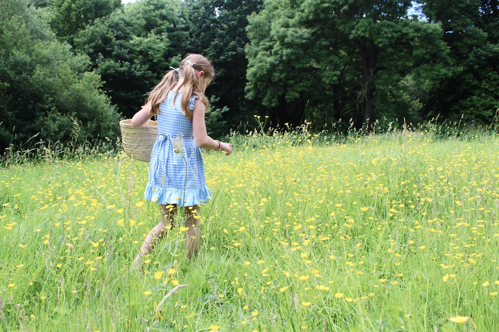 collecting flowers in a field of buttercups