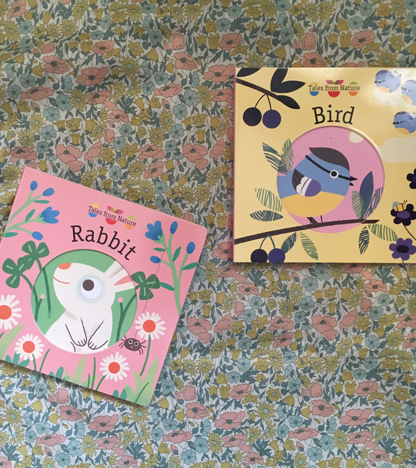 Tales From Nature: A cheerful new wildlife series for young children